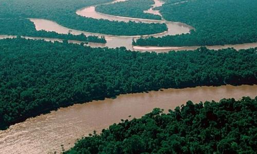 Petrobras assume blocos de exploração de petróleo no Rio Amazonas
